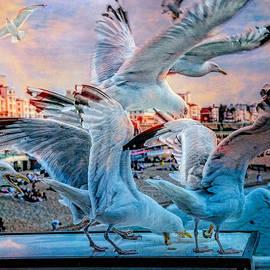 Chris Lord - Seagulls on Brighton Pier