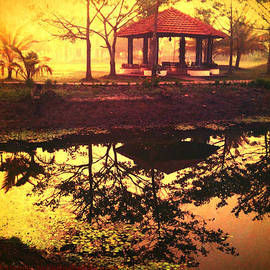 Abhishek Chamaria - Serenity at dawn