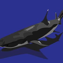 Tanias Reign - Shark