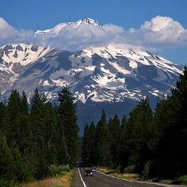 BuffaloWorks Photography - Shasta on the Road Again