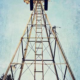 Pam  Holdsworth - Sky High