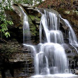 Thomas R Fletcher - Snow and Waterfall