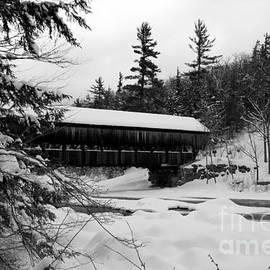 Lloyd Alexander - Snow Covered Bridge