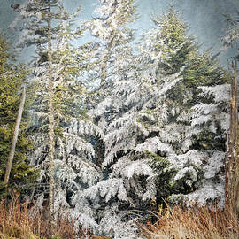 Cheryl Davis - Snow Covered Trees
