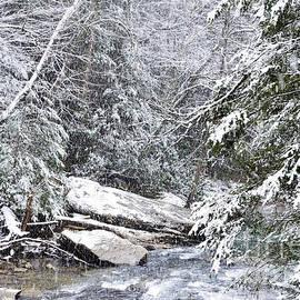 Thomas R Fletcher - Snow Storm