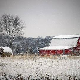 Cheryl Davis - Snowy Red Barn