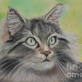 Julie Brugh Riffey - Soft Kitty