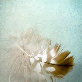 Jan Bickerton - Softly