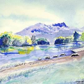 Susan  Clark - Sonoran Desert Lake