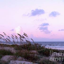 Al Powell Photography USA - Southern Shoreline