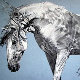 Melita Safran - Spanish horse