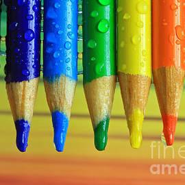 Tracy  Hall - Spectrum Pencils
