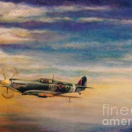 Liam O Conaire - Spitfire in Flight