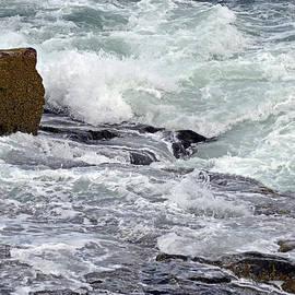 Lynda Lehmann - Splash of Sea Lace
