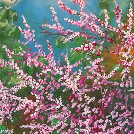 Dan  Whittemore - Springs Blossoms