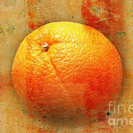 Andee Design - Still Life Orange Abstract