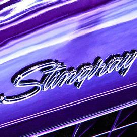 Bill Robinson - Stingray