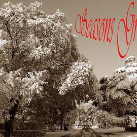 Skip Willits - STREET SCENE SEASONS GREETINGS