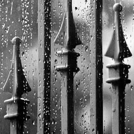 Elizabeth Hart - Summer Showers