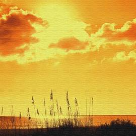 Ian  MacDonald - Sun