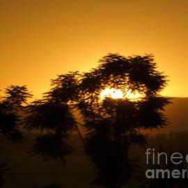 Abdul Majid Orakzai - Sun Seeing Off