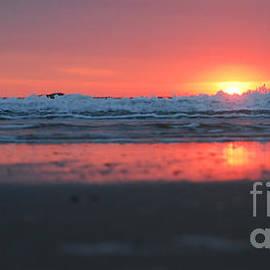 Linda Mesibov - Sunrise from the Sand