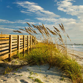 Dawna  Moore Photography - Sunny Day on the Boardwalk Amelia Island Florida