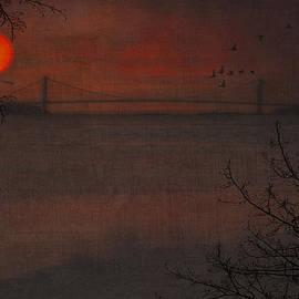 Tom York Images - SUNSET VIEW OF THE VERAZZANO BRIDGE
