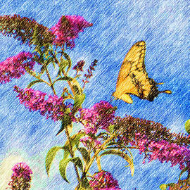 Heidi Smith - Swallowtail And Butterfly Bush
