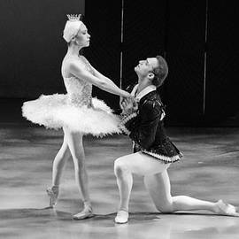 Cheryl Cencich - Swan Lake 10
