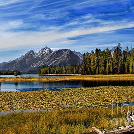 Robert Bales - Swan Lake