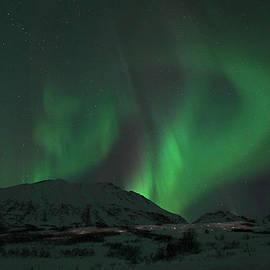 Sam Amato - Swirling Northern Lights