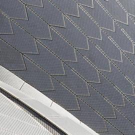 Martin Cameron - Sydney Opera House Roof