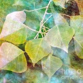 Judi Bagwell - Tallow Leaves