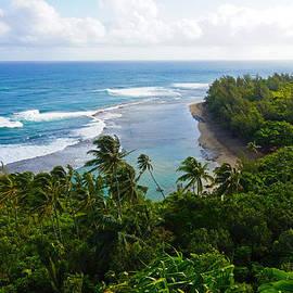 Kevin Smith - Taylor Camp Kauai