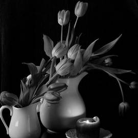 Sherry Hallemeier - The Beauty of Tulips in Black and White