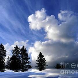 Elfriede Fulda - The Cloud