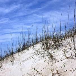 Joan Meyland - The Dune