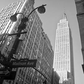Ilker Goksen - The Empire State Building in New York City