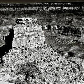 Bob and Nadine Johnston - The Grand Canyon BW