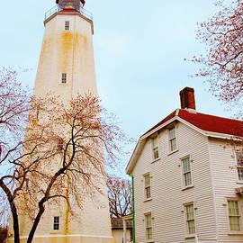 Correy DeWindt - The Light of Sandy Hook