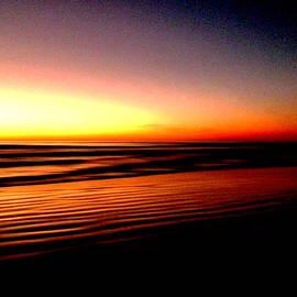 Steve Taylor - The Lines of Sunrise