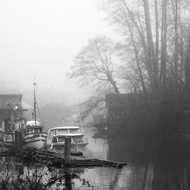 James Yang - The Morning Fog
