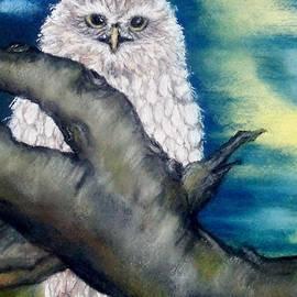 Annamarie Sidella-Felts - The Night Owl