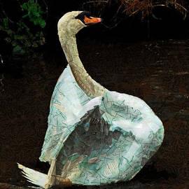 Steve Taylor - The Papier-Mache Swan