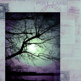 Ann Powell - The Postcard III