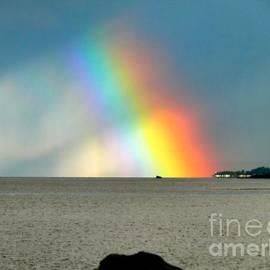 Gail Bridger - The Rainbow