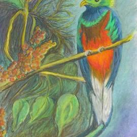 Carol Wisniewski - The Resplendent Quetzal Bird