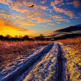 Phil Koch - The Road Not Easily Taken