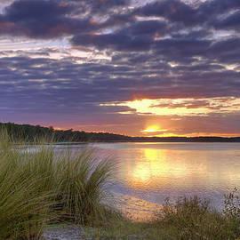 Phill  Doherty - Tidal Estuary